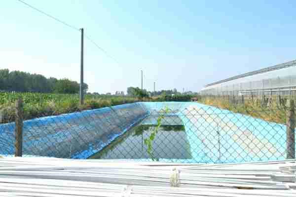 Harvesting rainwater - a farmer's blessing.
