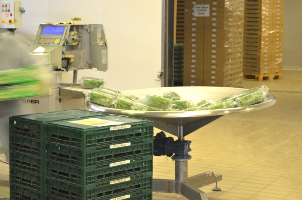 The washed, dried and packed produce is ready for distribution