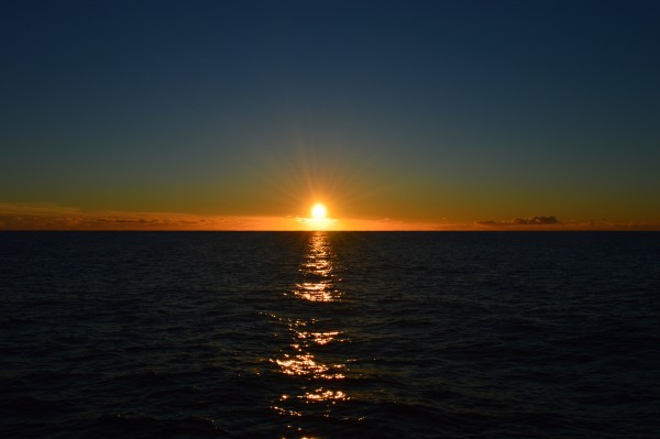 We didn't  see the whales but we did get to enjoy this magnificent sunset. Isn't it beautiful?