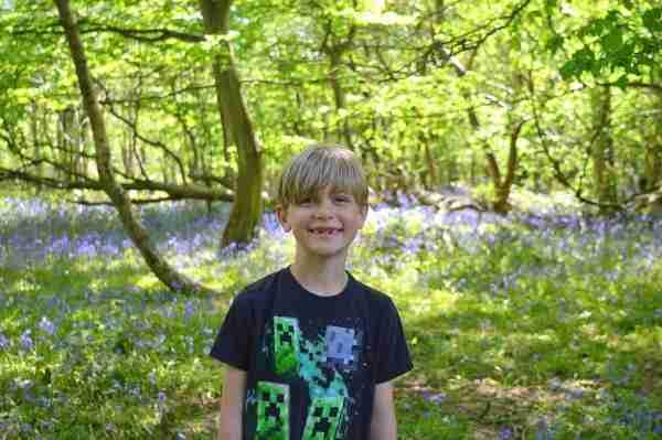 Ollie loved the 'delightful' bluebells