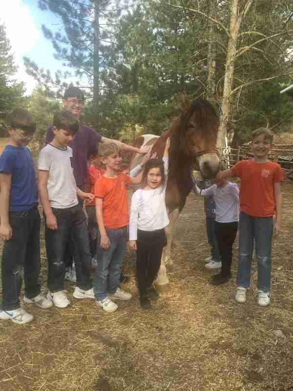 albania farma sotira kids and horse